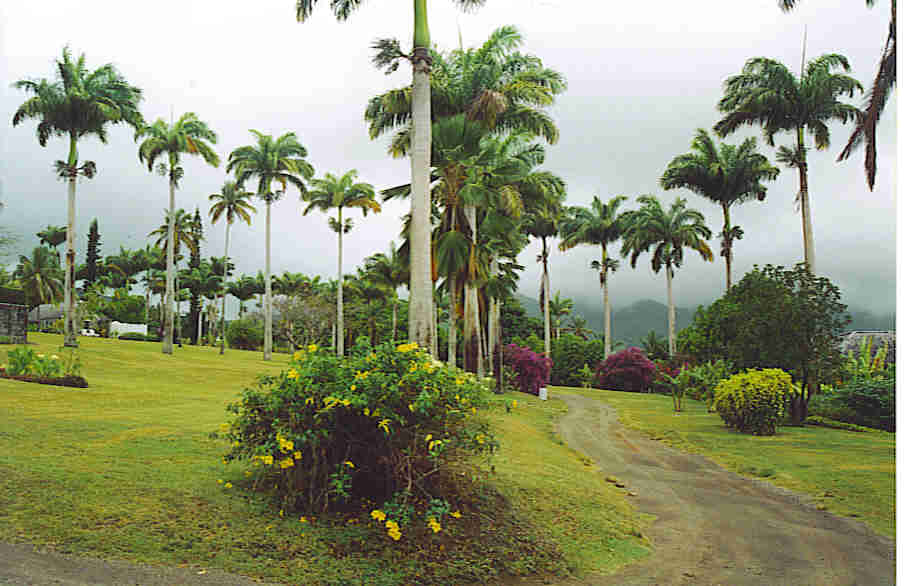 Ottleys Plantation, St. Kitts, BWI