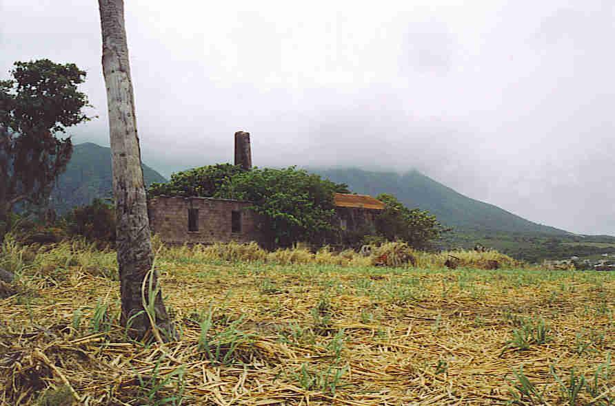 St. Kitts sugar plantation ruins.
