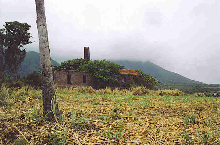 St. Kitts sugar plantation ruins.