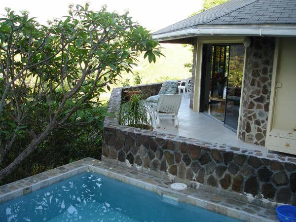 Villa pool and wrap patio