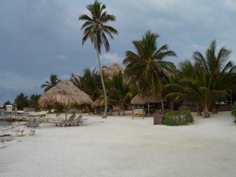 Xanadu Resort beach front scene. Wood lloungers under thatched roofed umbrellas, tall palms tossing in the brisk sea breeze.