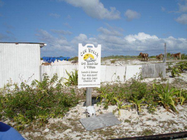 Cow Wreck beach.