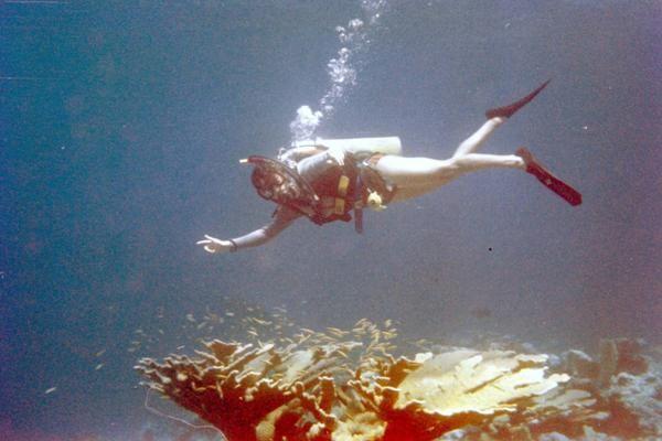 Lynn dives off Miami, circa 1978
