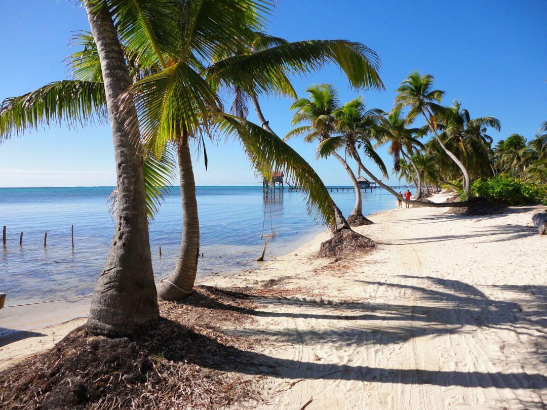 Bike path, north island, Ambergris Caye