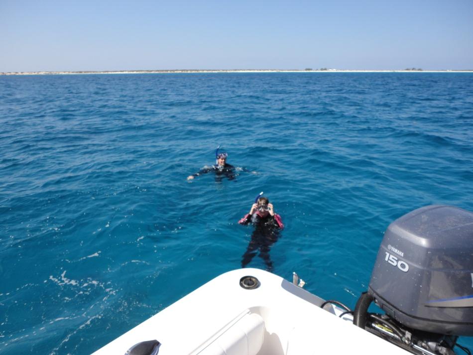 Snorkeling reefs offshore, Salt Cay.