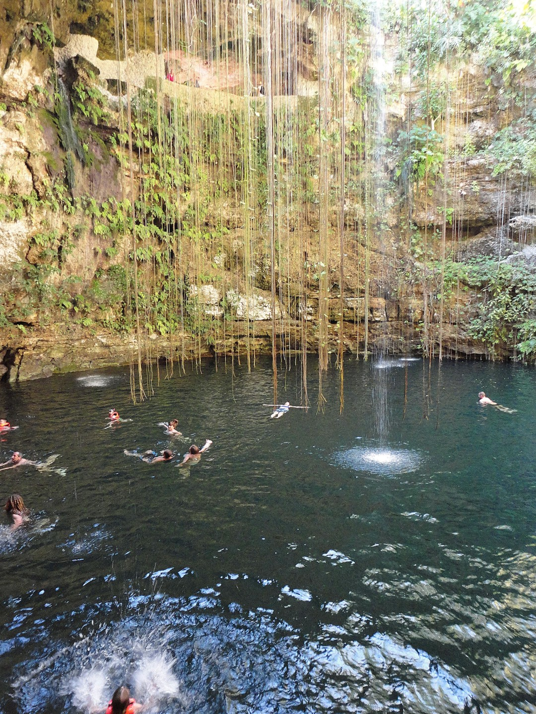 Robin floats, Ik Kil cenote, near Chichen Itza, MX