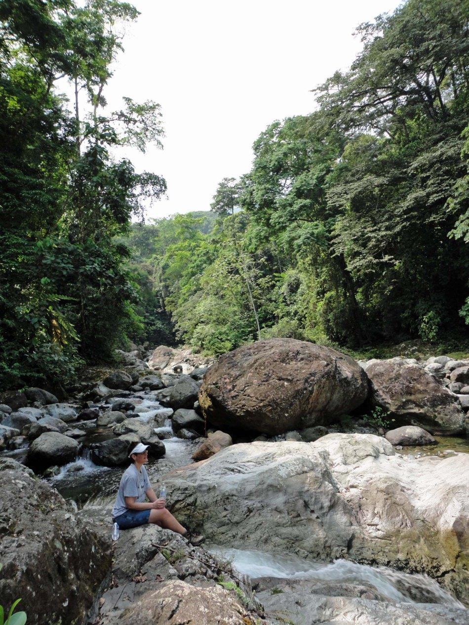 Las Pilas river in the dry season, Pico Bonito Lodge, Honduras.