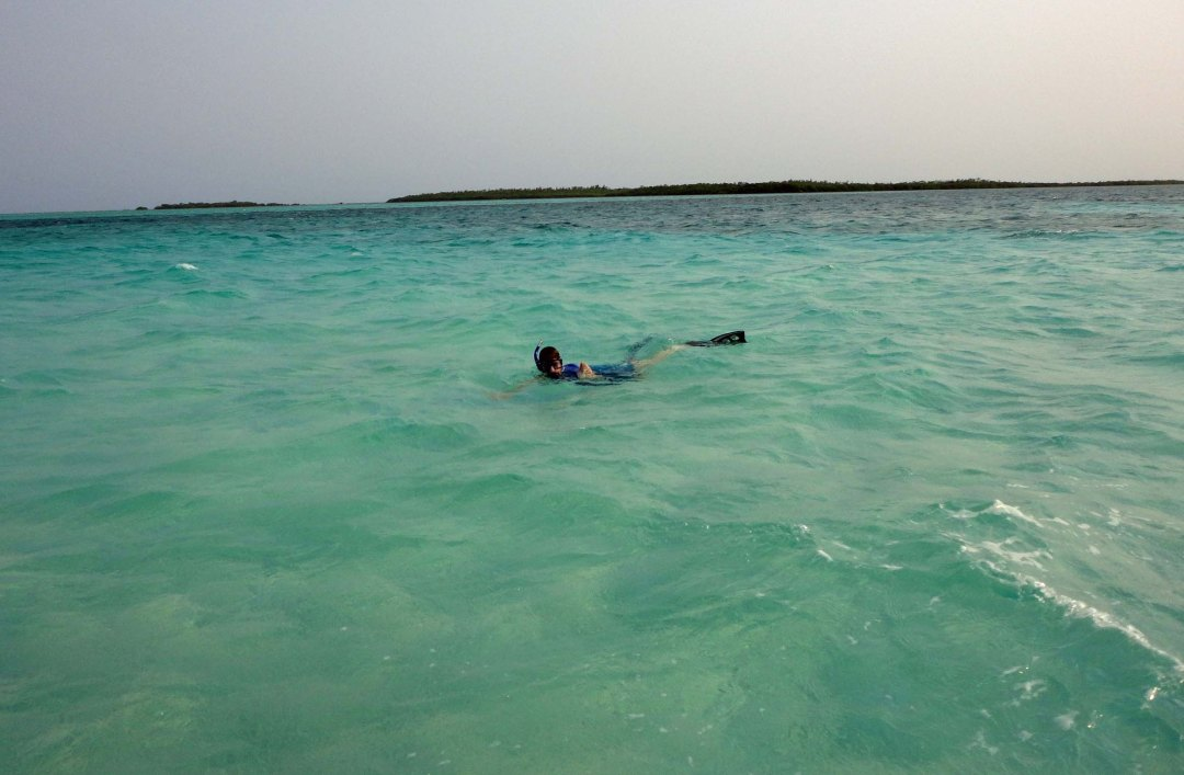 Robin snorkels off Turneffe Atoll, Belize