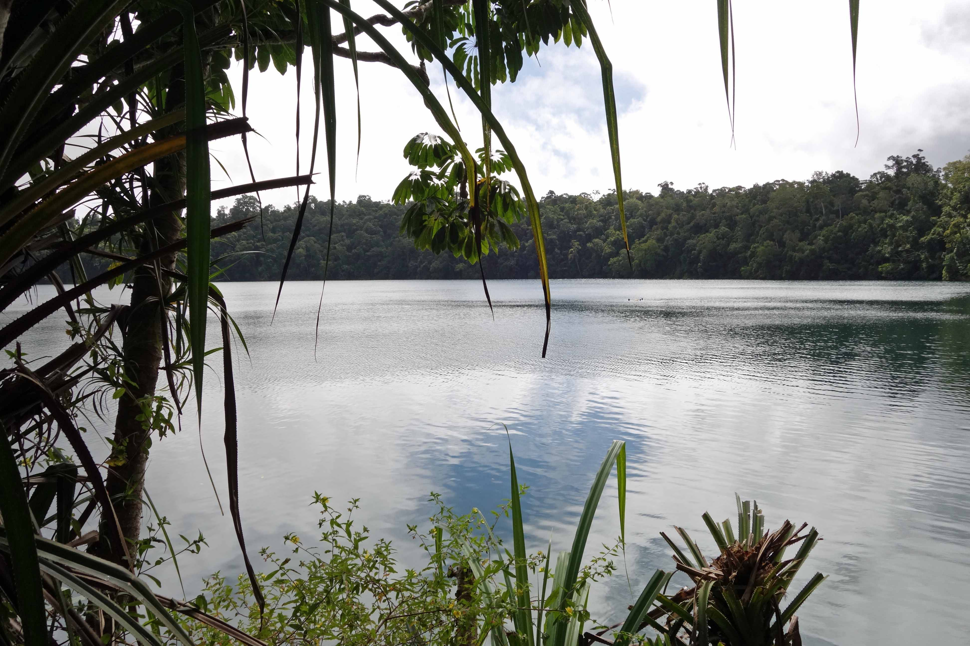 Lake Eacham, Atherton Tablelands, QLD, Australia