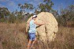 termite mound QLD