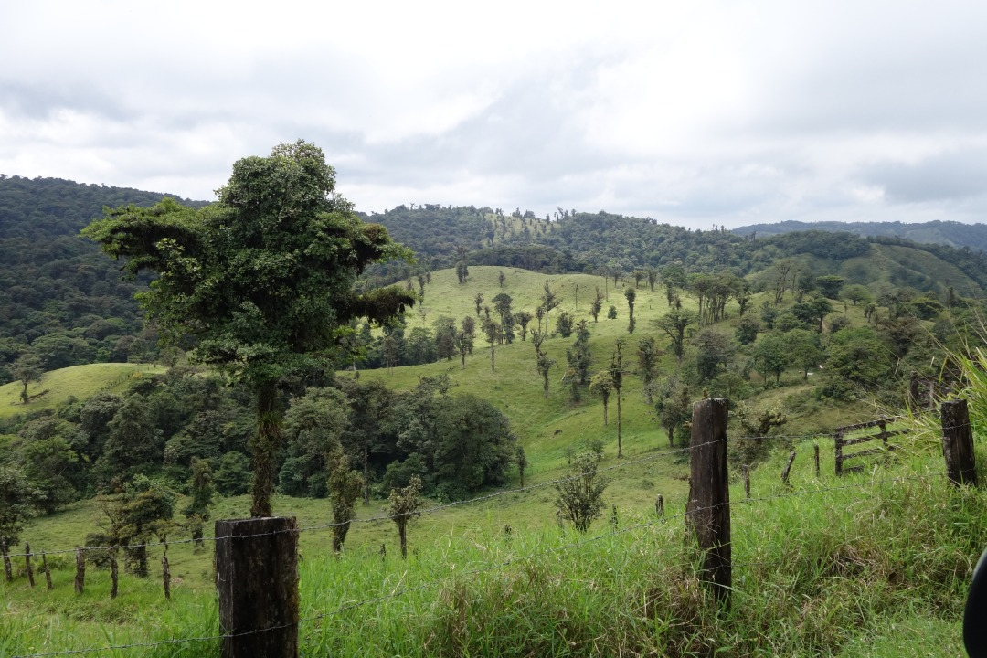 Rural rolling rainforest hills, Costa Rica.