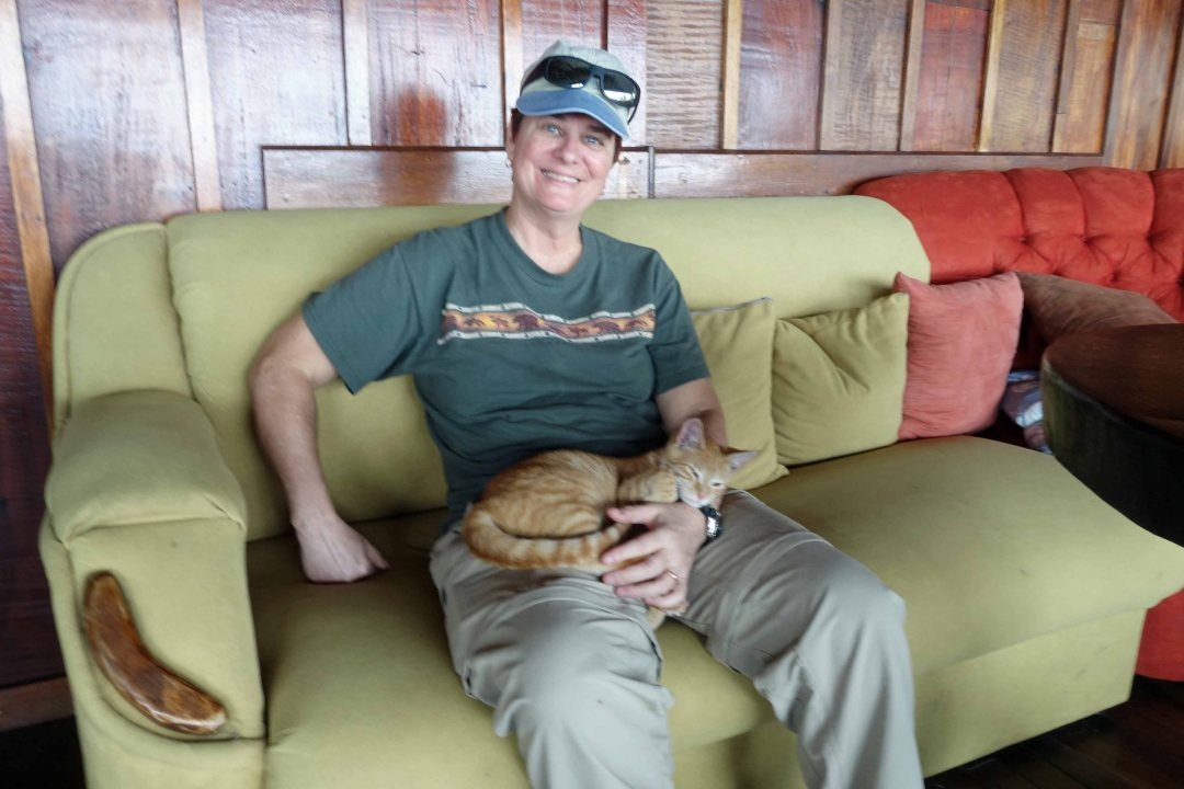 Lynn with her rainforest feline friend, Costa Rica.