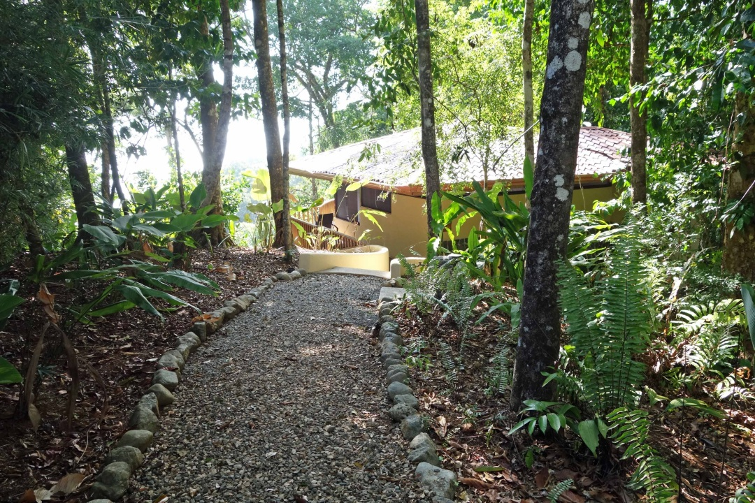 Our cabina, el Remanso, Osa peninsula, Costa Rica