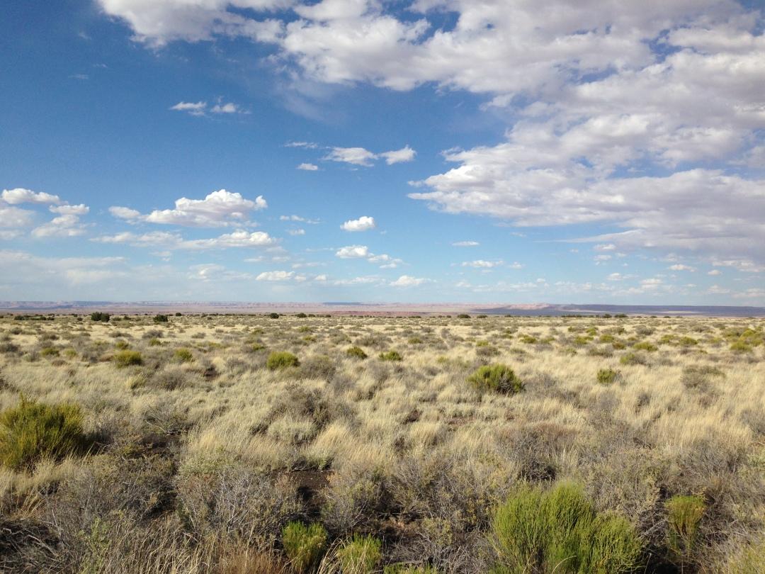 Painted Desert near Wupatki pueblo ruins.