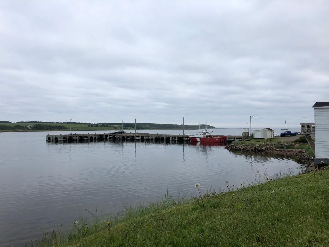 Near Cheticamp, Cape Breton Island, Canada.