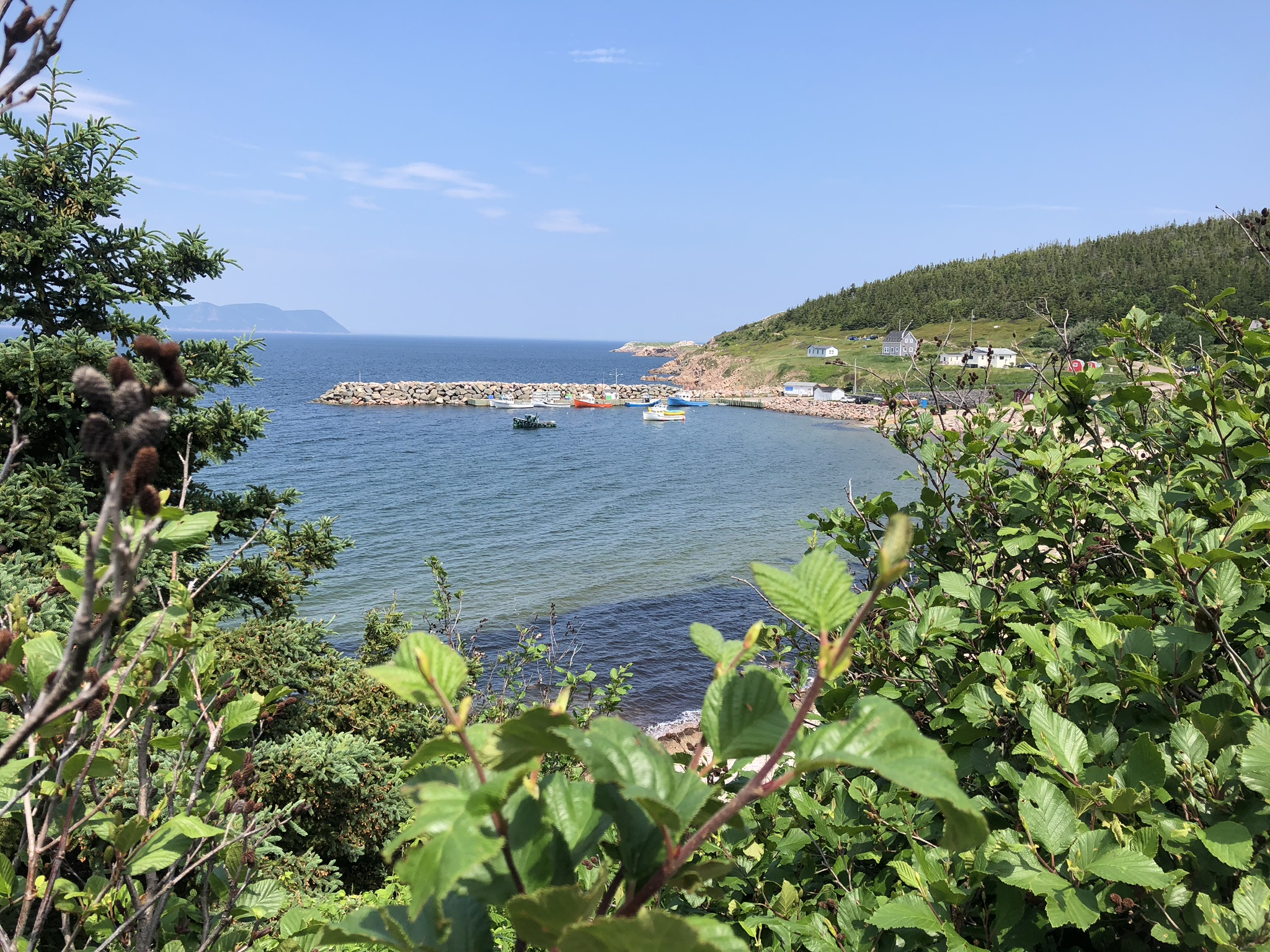White Point harbor, Cape Breton island.